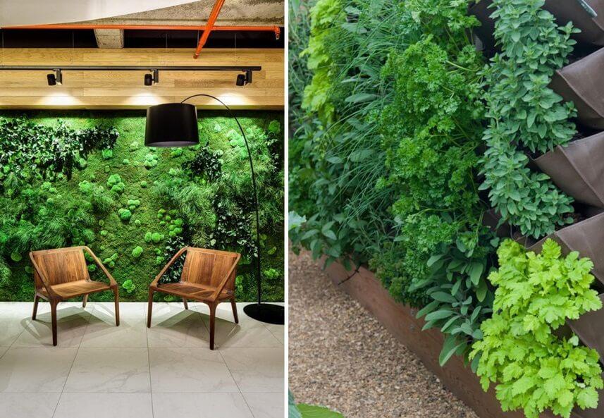 Pereti decorativi verzi